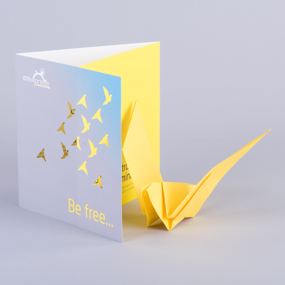 Origami bird and die-cut brochure